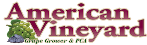 American Vineyard Logo