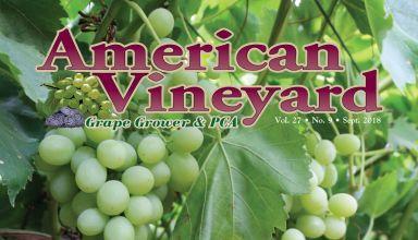 American Vineyard Magazine September 2018