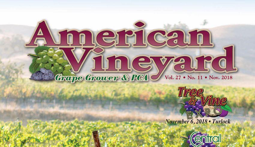 American Vineyard Magazine November 2018