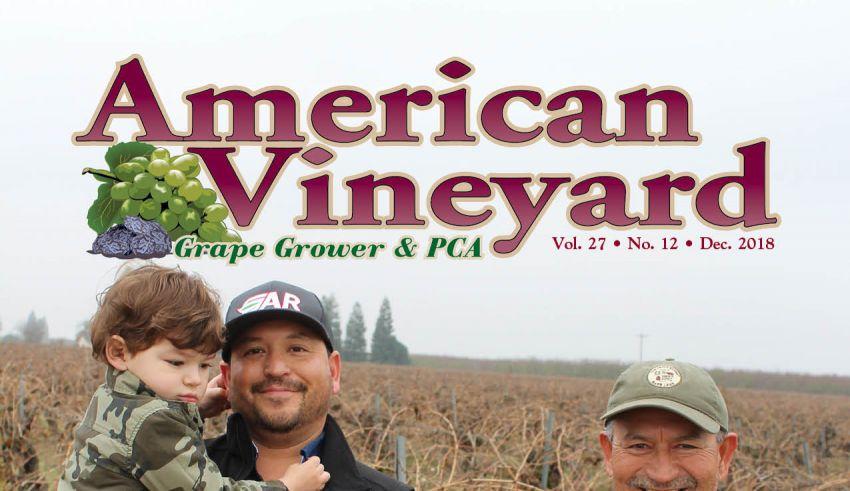 American Vineyard Magazine December 2018