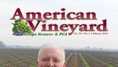 American Vineyard Magazine February 2019