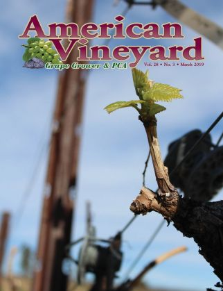 American Vineyard Magazine March 2019