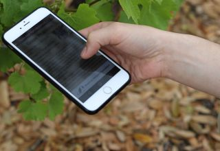 New Vineyard Advisor App for American Grape Growers Free