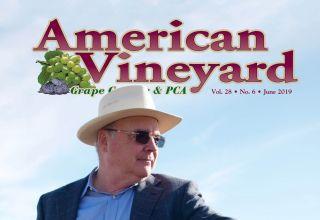 American Vineyard Magazine June 2019