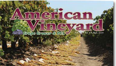 American Vineyard Magazine September 2019