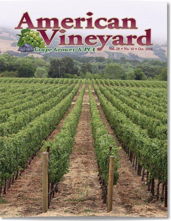 American Vineyard Magazine October 2019 American