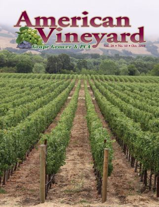 American Vineyard Magazine October 2019