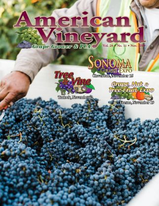 American Vineyard Magazine November 2019