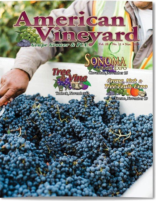 American Vineyard Magazine November 2019