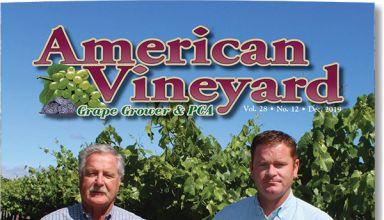American Vineyard Magazine December 2019