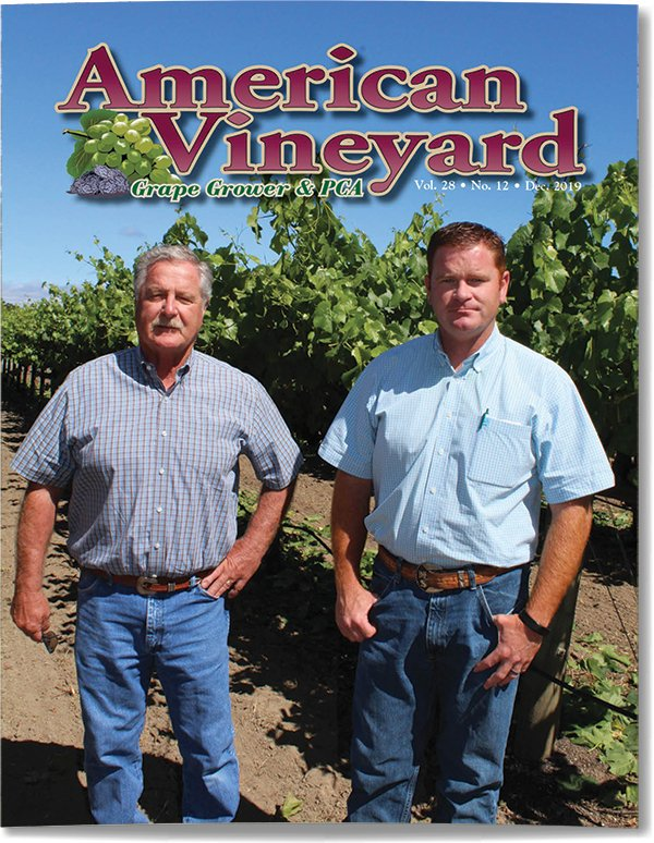 American Vineyard Magazine December 2019