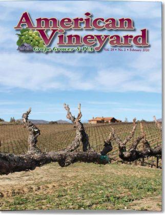 American Vineyard Magazine February 2020