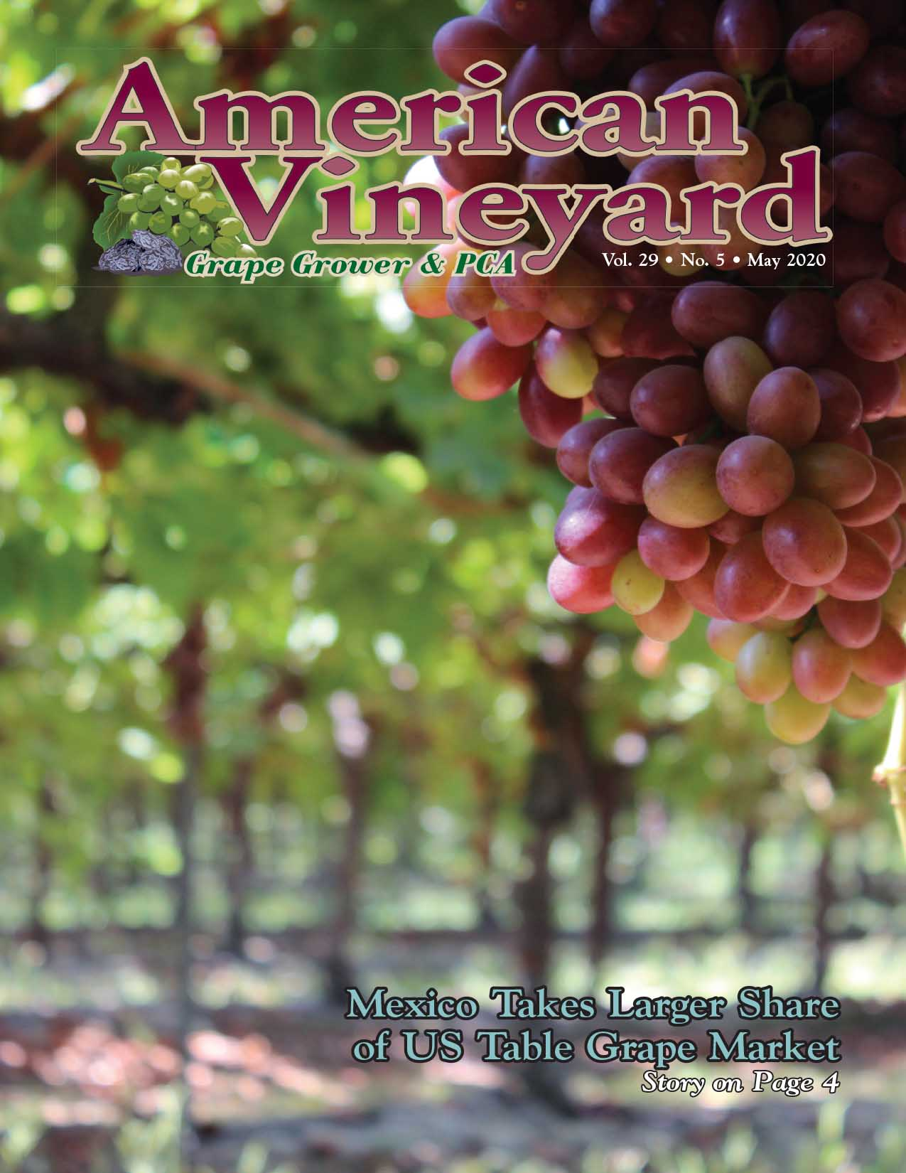 American Vineyard May Issue
