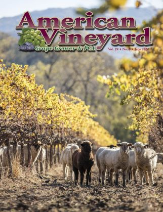 American Vineyard Magazine June Issue