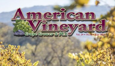 American Vineyard June Issue