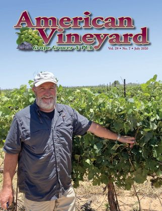 American Vineyard Magazine July Issue