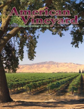 American Vineyard Magazine October Issue