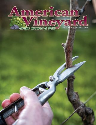 American Vineyard Magazine December Issue
