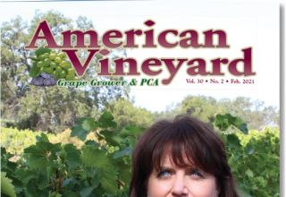 American Vineyard February Issue