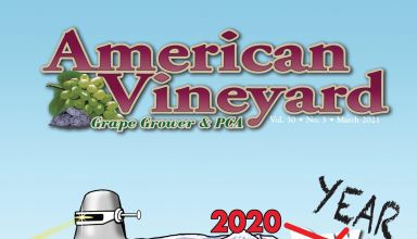 American Vineyard March Issue
