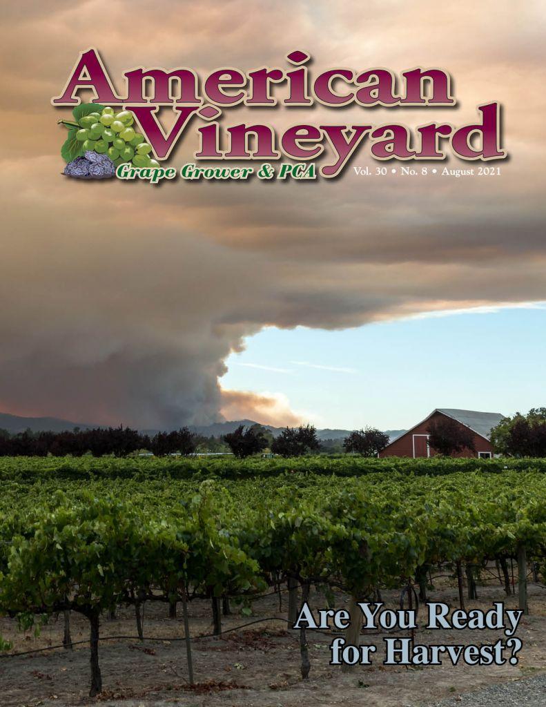 American Vineyard August Issue