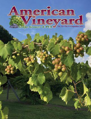 American Vineyard September Issue